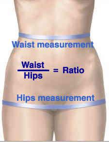 waist-hips-ratio1
